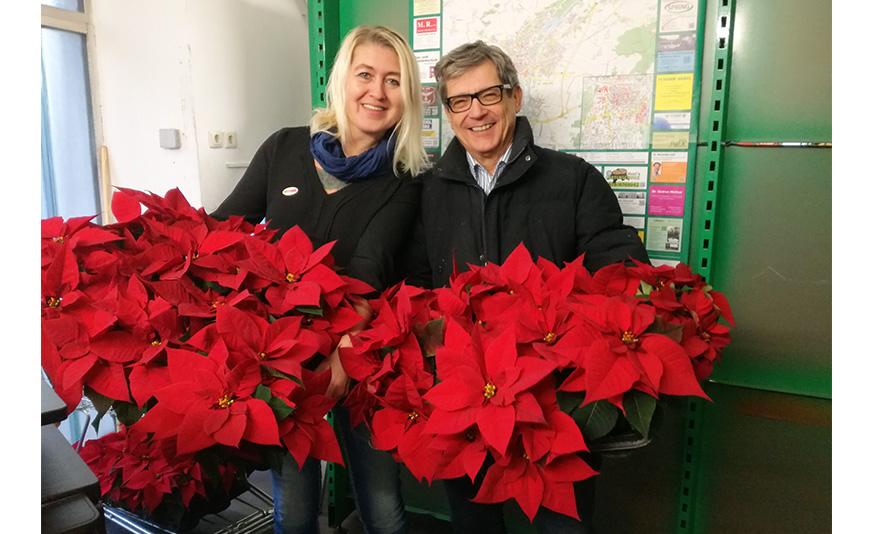 Peter Krammer und Anneliese Dörr mit den Weihnachtssternen