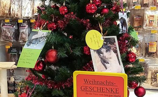 Wunschbaum in der St. Pöltner Futterhaus Filiale