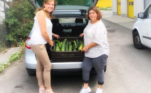 Bio Zucchini der Familie Kirstorfers werden in den soogut-Sozialmarkt Mödling gebracht