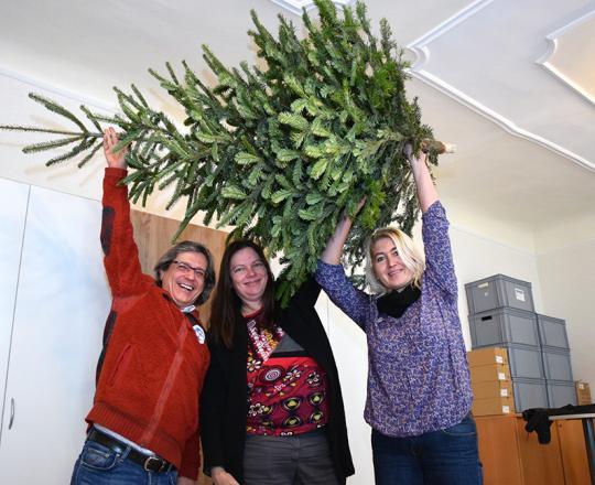 Fünf weitere Christbäume für den SOMA St. Pölten - gespendet von StR Peter Krammer